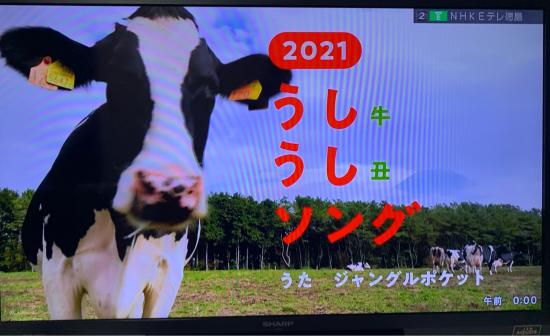 2021年、よろしくお願いします。_f0053665_21541707.jpg