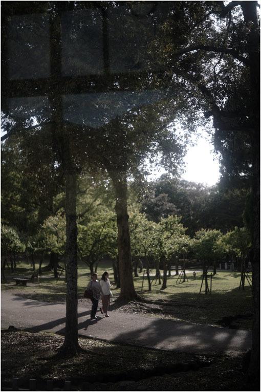 874 静寂そのもの(2020年5月20日エンラージングアナスチグマート50mmF3.5がまたしても奈良町に)_c0168172_21250140.jpg