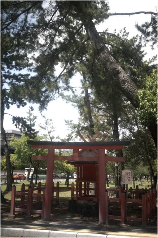 874 静寂そのもの(2020年5月20日エンラージングアナスチグマート50mmF3.5がまたしても奈良町に)_c0168172_21423158.jpg