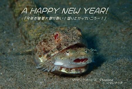 「謹賀新年!」_b0033573_18345585.jpg