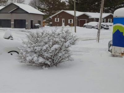 ついに雪景色_c0353373_20012810.jpg
