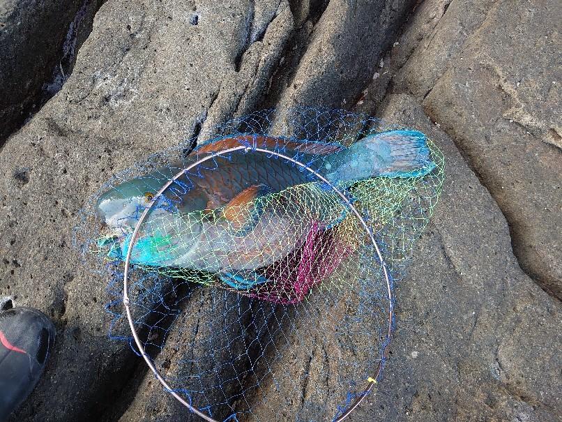 2021年の初釣り報告!!_a0126283_08553528.jpg