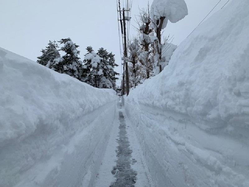 横手市は大雪です_e0341538_14310233.jpg