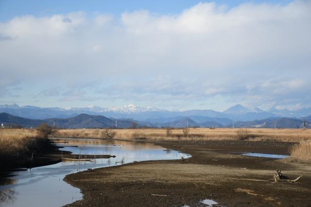 渡良瀬遊水地と新年を迎えた庭_b0356401_23093930.jpg