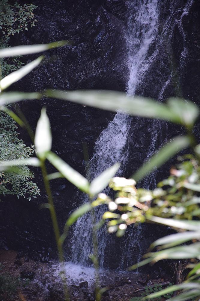 細川ガラシャ隠棲地「味土野」 その3 <味土野ガラシャ大滝>_e0158128_17404926.jpg