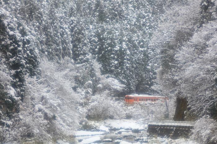 雪国列車_a0294534_19282420.jpg