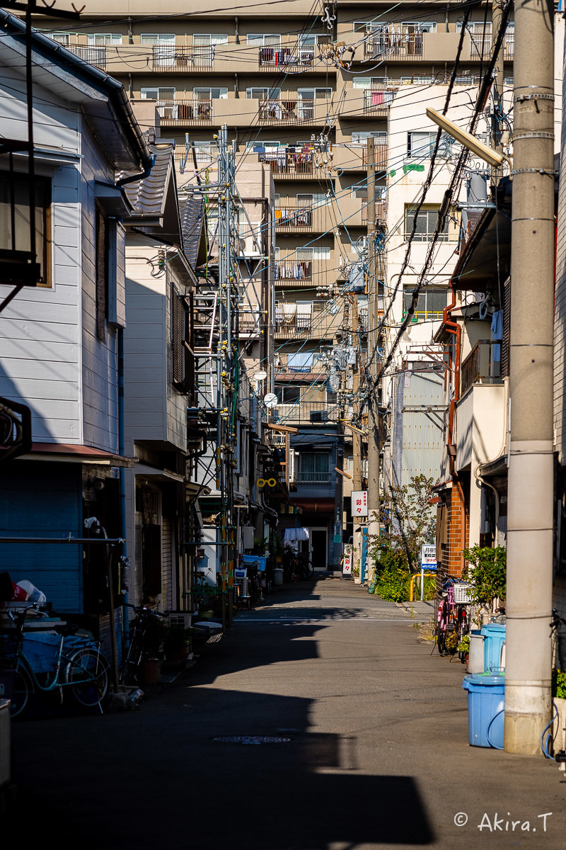 北加賀屋 -5-_f0152550_21472457.jpg