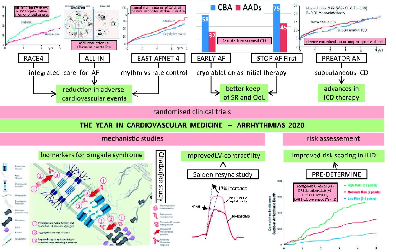 心房細動リズムコントロールのランダム化試験に関するまとめ:EHJ不整脈この1年2020より_a0119856_18104168.png