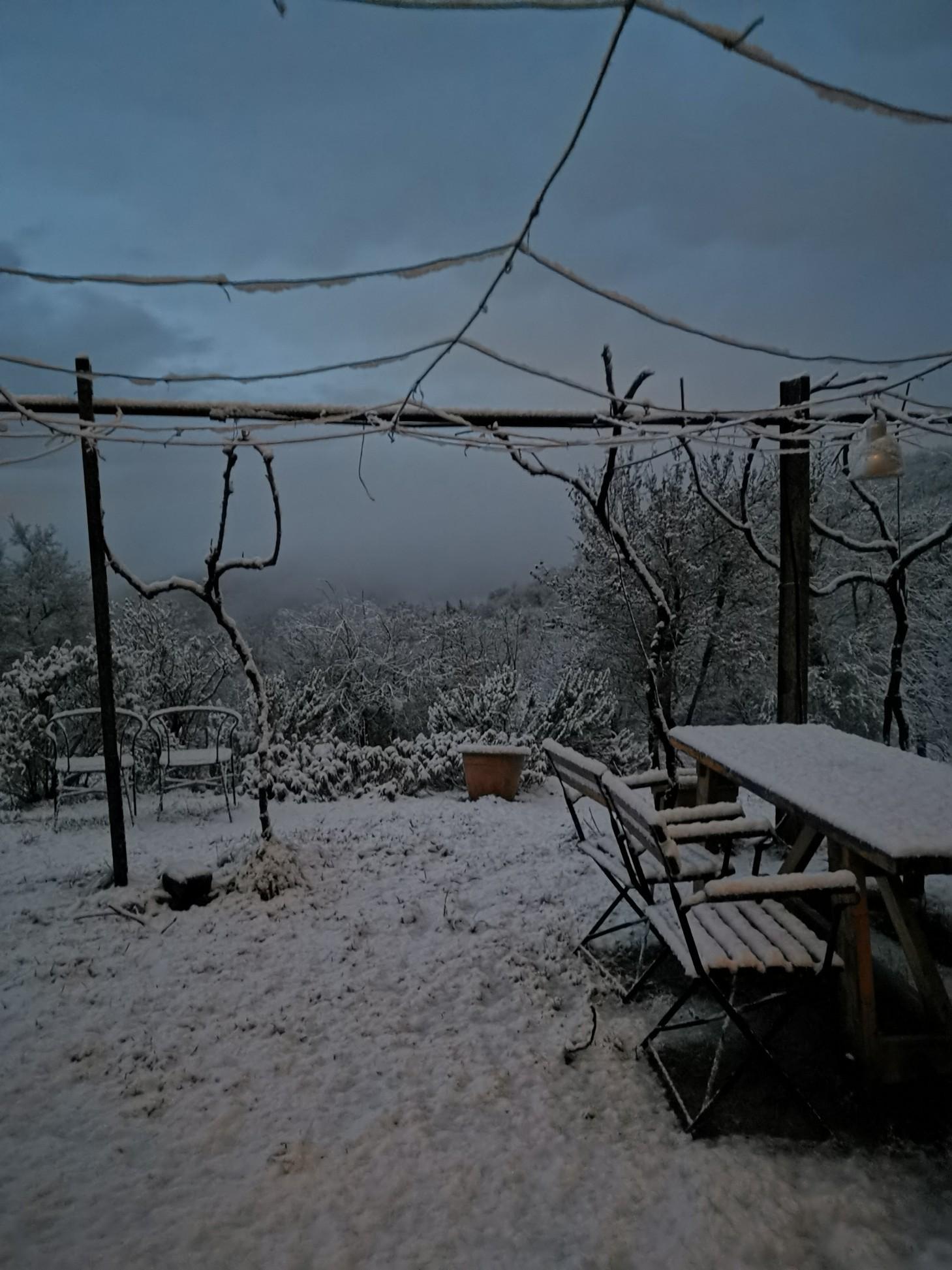 初雪_f0106597_18465146.jpg