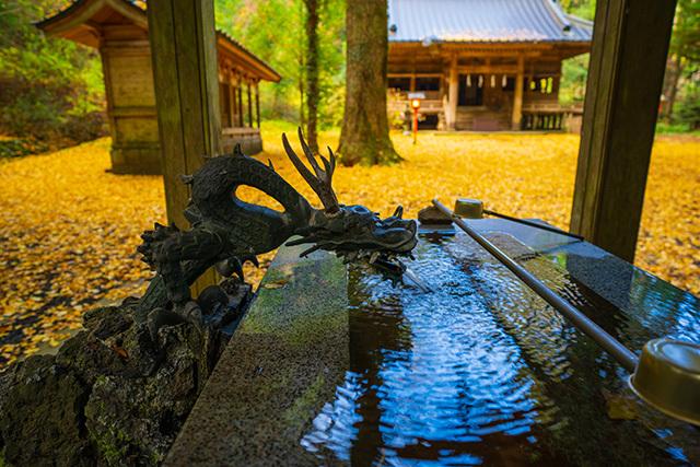 御殿場 二岡神社のイチョウ_b0145398_22594081.jpg