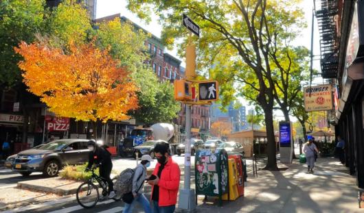 じわじわ、じっくりニューヨークの壁画巡り、イースト・ビレッジお散歩_b0007805_01023396.jpg