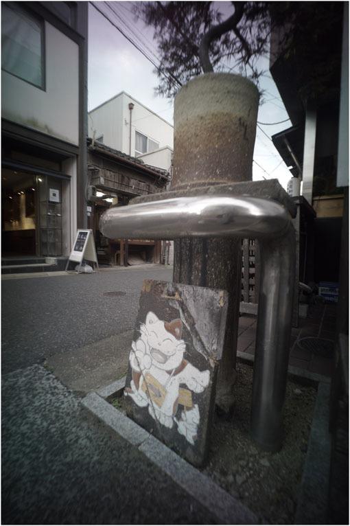 875.01 生き生きと(2020年5月30日ホロゴン15mmF8は勝手知ったる奈良町をのびのび散歩)1  奈良町へ_c0168172_22330470.jpg