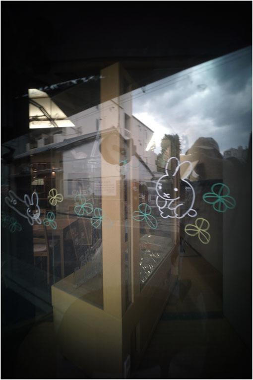 875.01 生き生きと(2020年5月30日ホロゴン15mmF8は勝手知ったる奈良町をのびのび散歩)1  奈良町へ_c0168172_22332677.jpg
