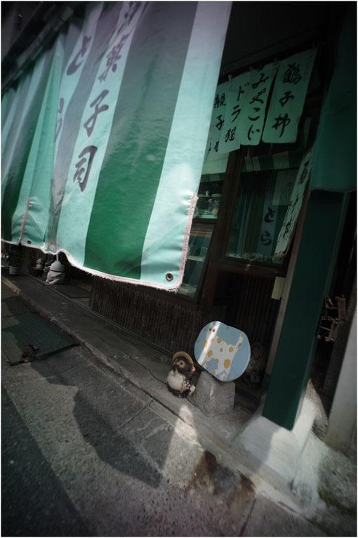 875.01 生き生きと(2020年5月30日ホロゴン15mmF8は勝手知ったる奈良町をのびのび散歩)1  奈良町へ_c0168172_22371804.jpg