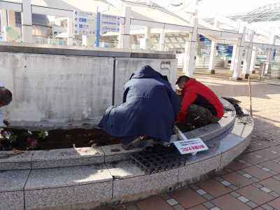 名古屋港水族館前花壇の植栽R3.1.6_d0338682_14222065.jpg