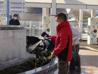 名古屋港水族館前花壇の植栽R3.1.6_d0338682_14225700.jpg