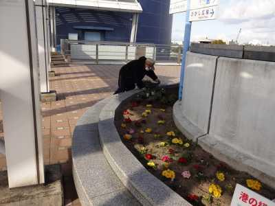 名古屋港水族館前花壇の植栽R3.1.6_d0338682_14233497.jpg