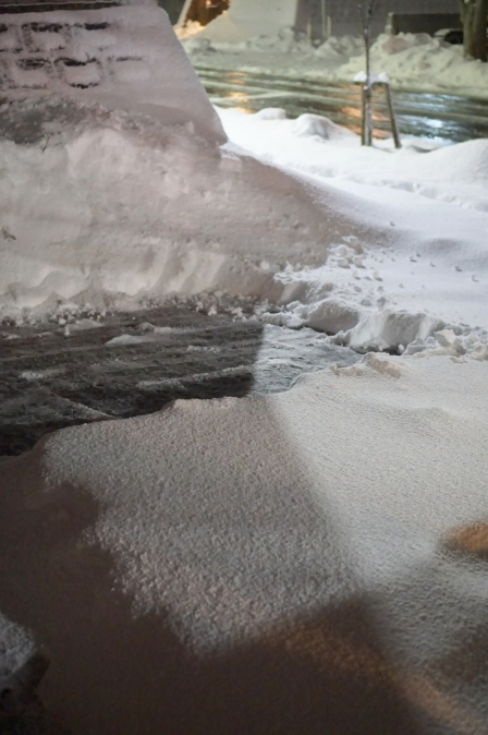 大雪の中で_b0151911_20453130.jpg