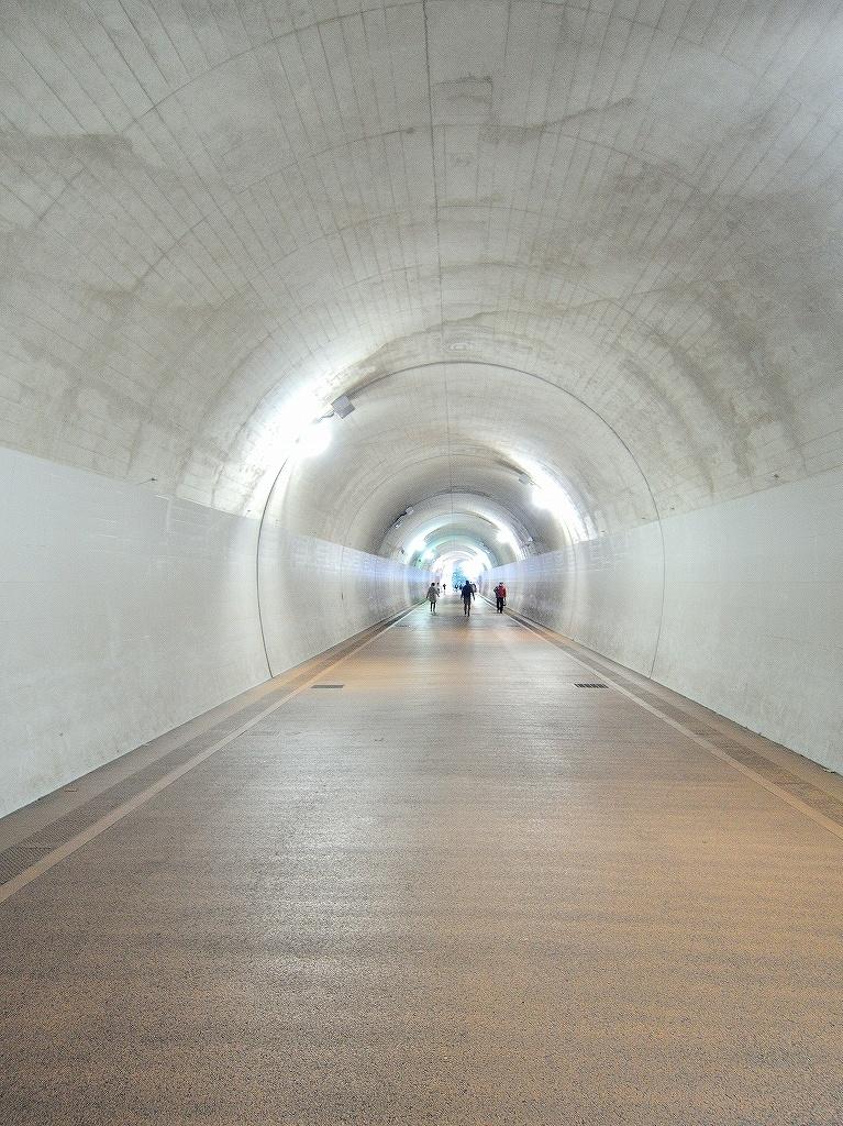 ある風景:東横フラワー緑道 反町 ▶ 横浜 #1_d0393923_23133712.jpg