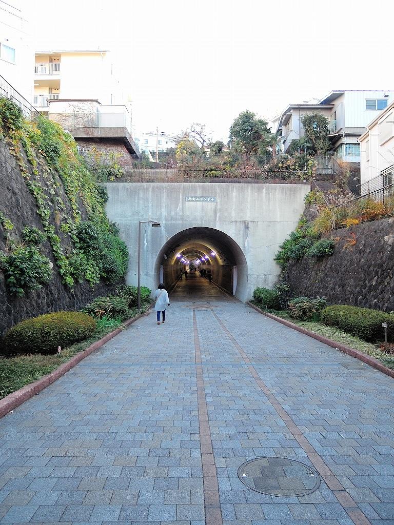 ある風景:東横フラワー緑道 反町 ▶ 横浜 #1_d0393923_23133767.jpg