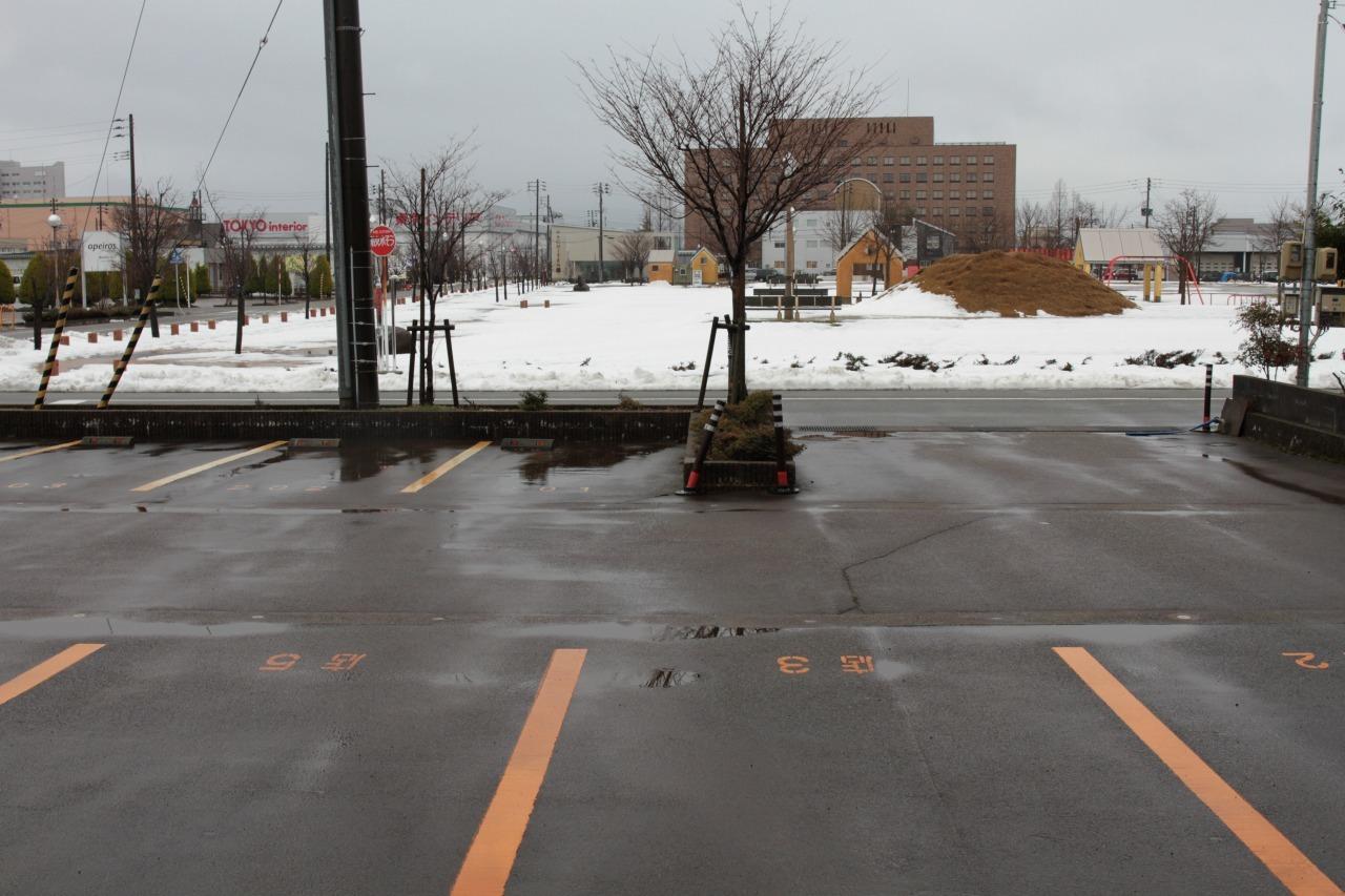 ロング丈のナイロンジャケットで除雪を楽し・・む。_b0139233_13244005.jpg