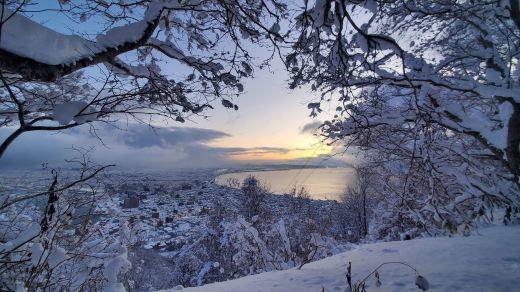 函館山通信 2021年1月8日号_e0145841_19333759.jpg