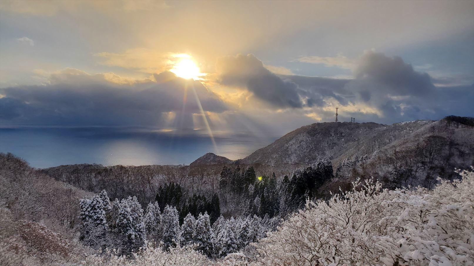 函館山通信 2021年1月8日号_e0145841_19414345.jpg
