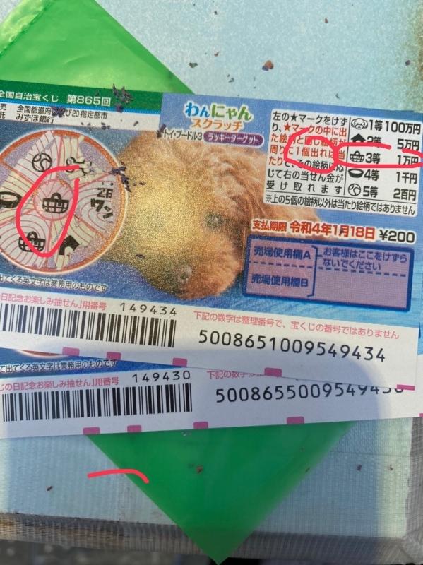年末ジャンボは50枚買ったのに、1500円しか、当たってなかった。でも、代わりに今日、これで一万円当たった。笑_e0381948_20082597.jpg