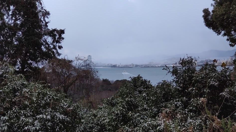 2021/1/8 今日の島暮らし/大雪_f0201157_12344414.jpg