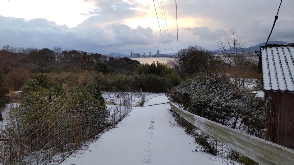 2021/1/8 今日の島暮らし/大雪_f0201157_12344415.jpg