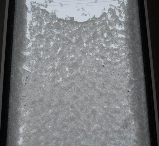 雪の台風_c0198781_14240003.jpg