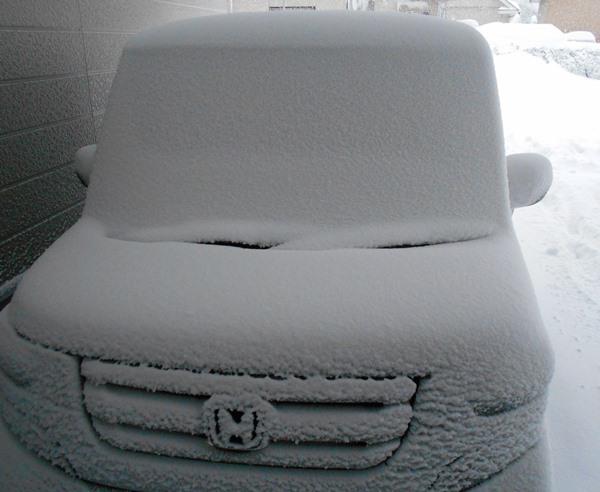 雪の台風_c0198781_14242466.jpg