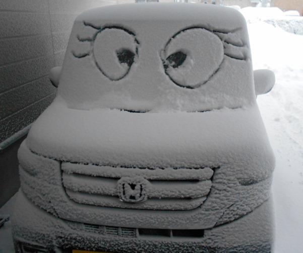 雪の台風_c0198781_14243306.jpg