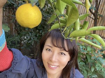 2021年も年初は無農薬で新宿産の柚子の香りに癒されて(^^) & 麻弥柿ドライフルーツ完成!&「麻弥カレンダー」web販売1月末までです!_c0118528_16570790.jpg