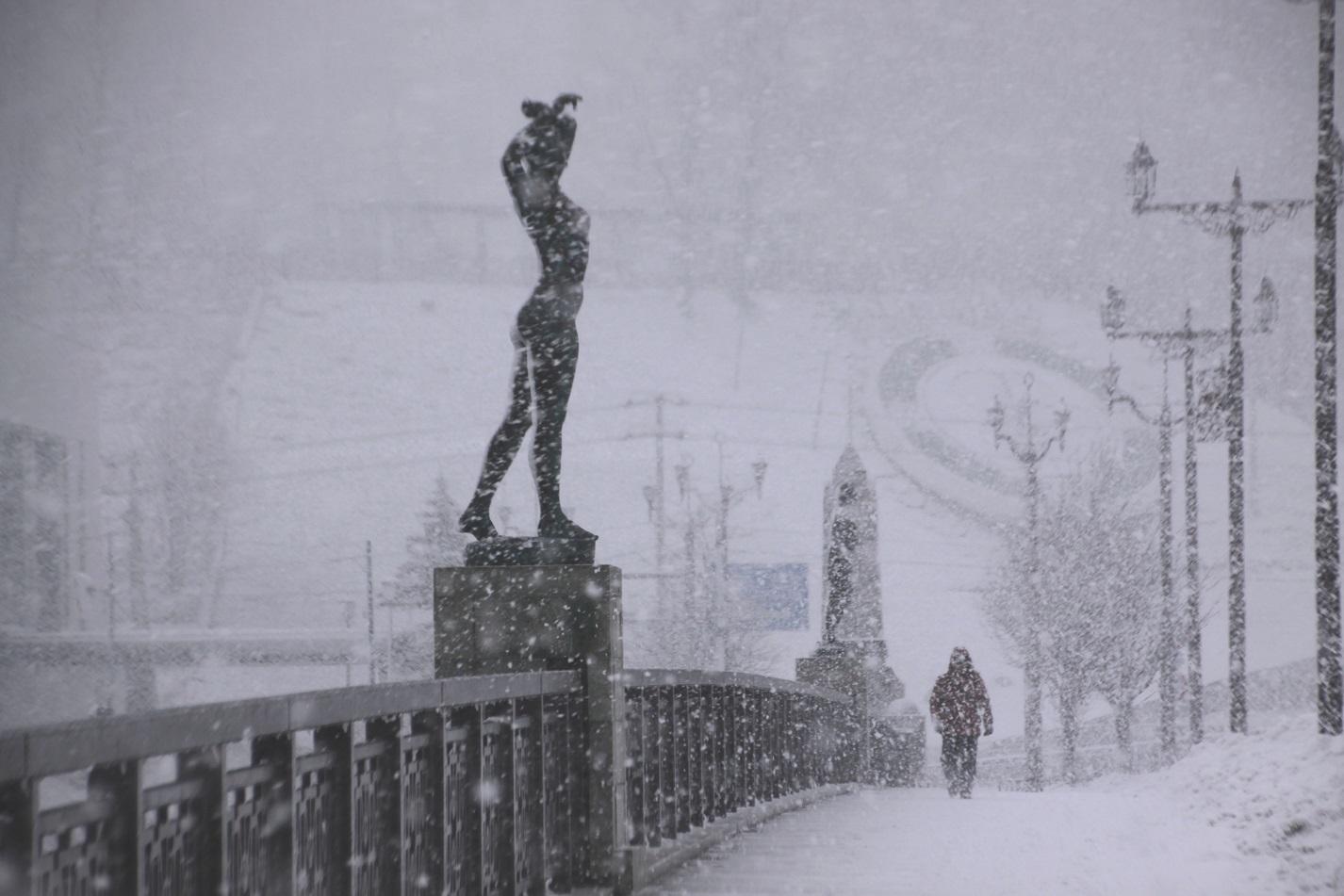 雪・悲喜いろいろ 1月9日_f0113639_16374570.jpg