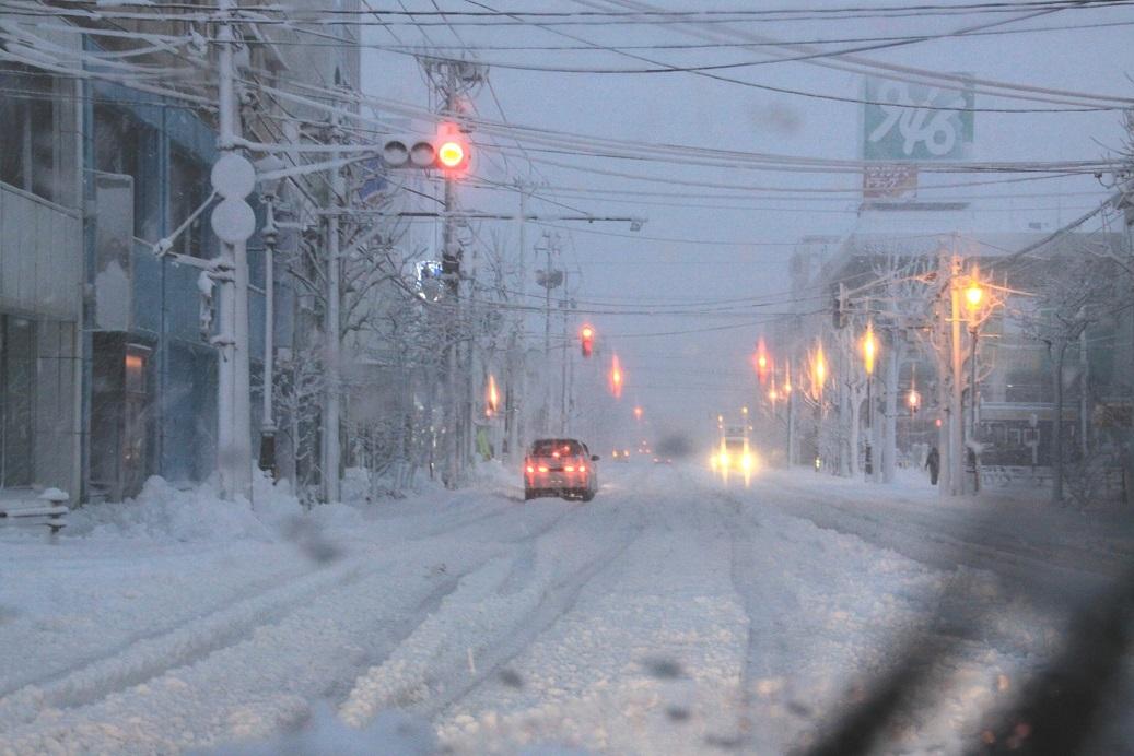 雪・悲喜いろいろ 1月9日_f0113639_16375781.jpg