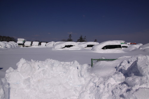 雪・悲喜いろいろ 1月9日_f0113639_16381904.jpg