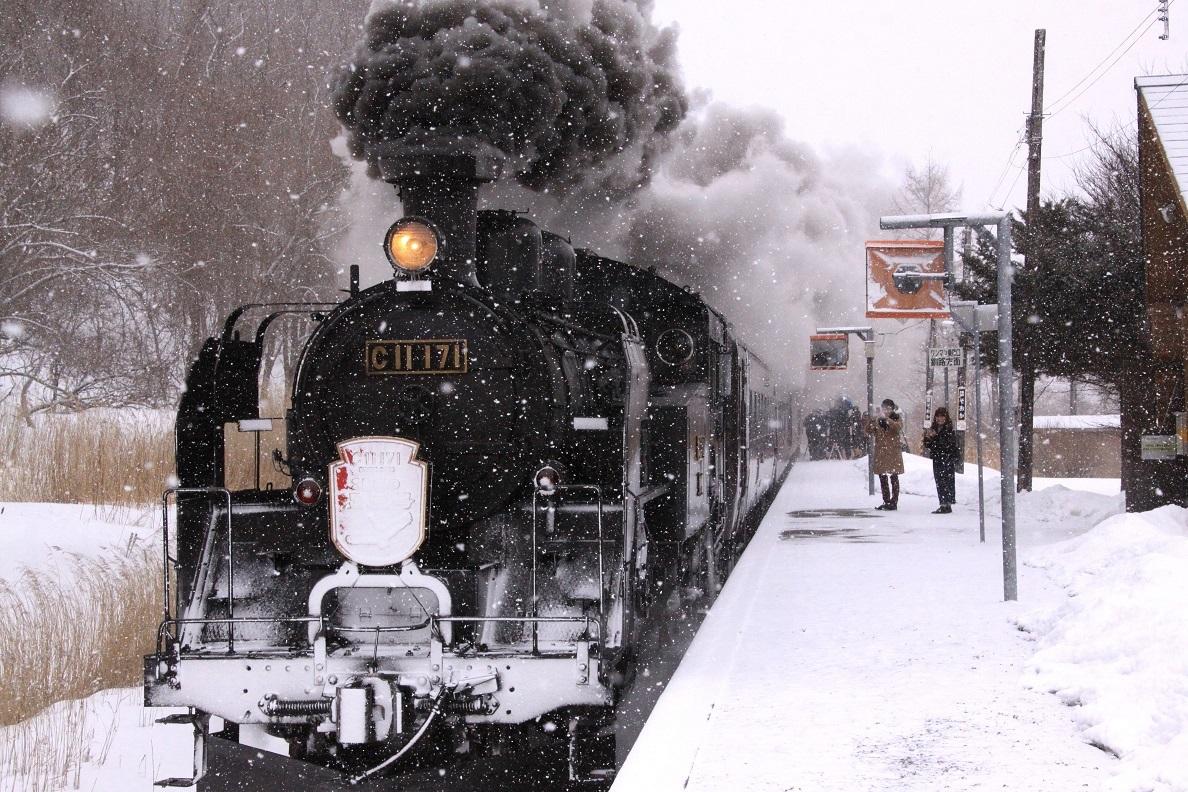 雪・悲喜いろいろ 1月9日_f0113639_16382714.jpg