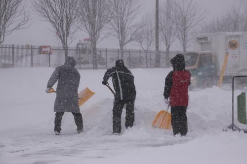 雪・悲喜いろいろ 1月9日_f0113639_16423943.jpg