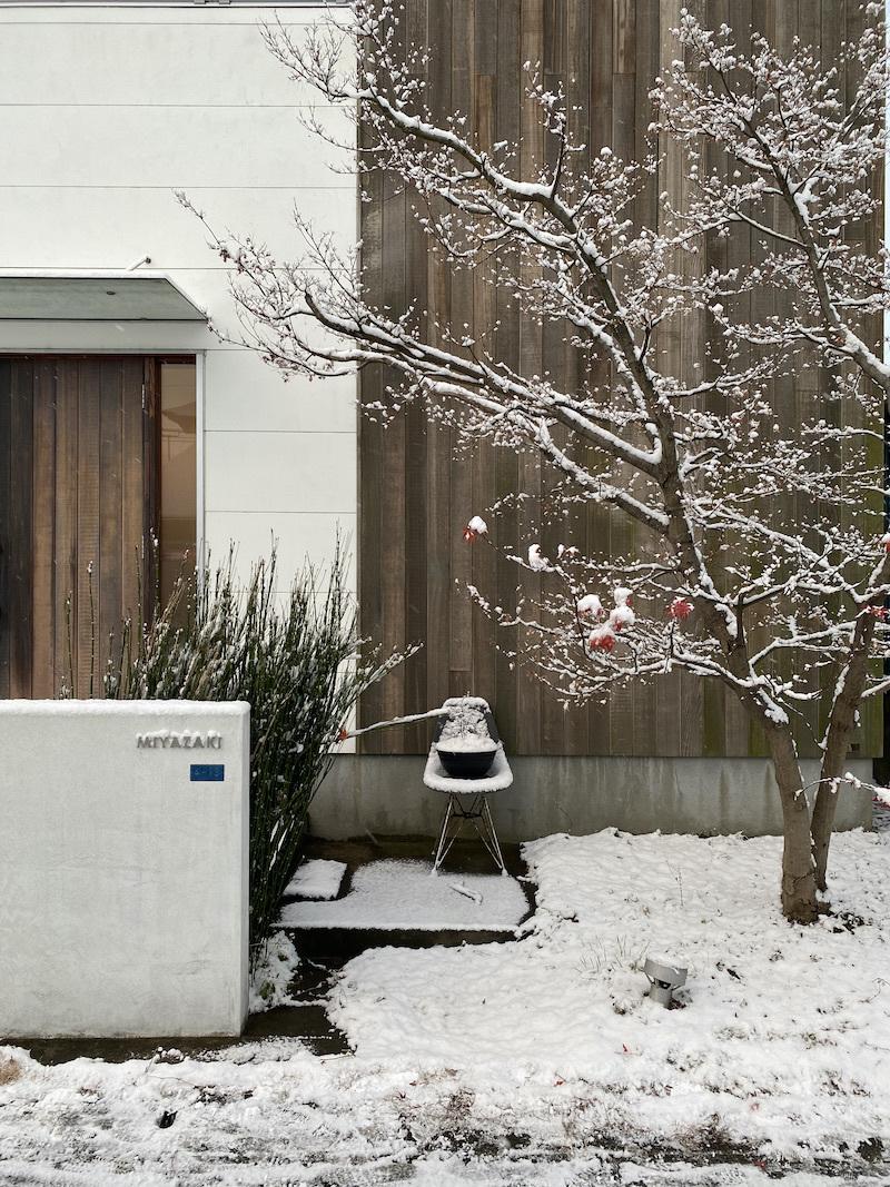 2021年の水ケ江の雪景色。_f0176239_07190075.jpeg