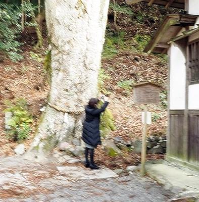 丹生川上神社下社参拝とドライアイ改善のお塩_b0194861_11320355.jpg