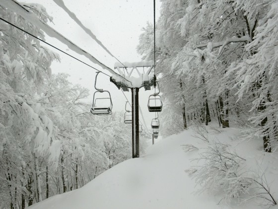 スキー、2020-21シーズン③④ ~ 白馬五竜&Hakuba47→松本市内泊_e0045768_21533057.jpg