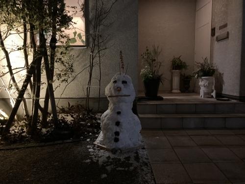雪が降る_c0164996_17452381.jpg