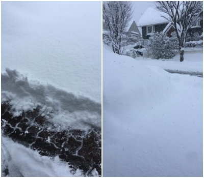 降っても降っても、透かしても透かしても…まさしく大雪!_b0151911_10562651.jpg