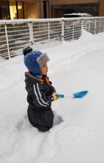 降っても降っても、透かしても透かしても…まさしく大雪!_b0151911_10580374.jpg