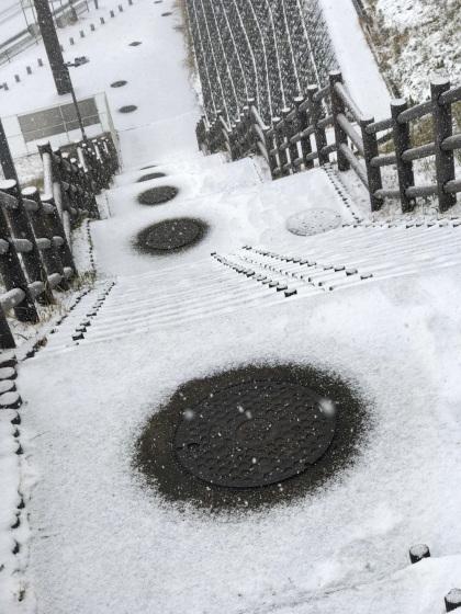 雪の朝_a0096313_10282419.jpg