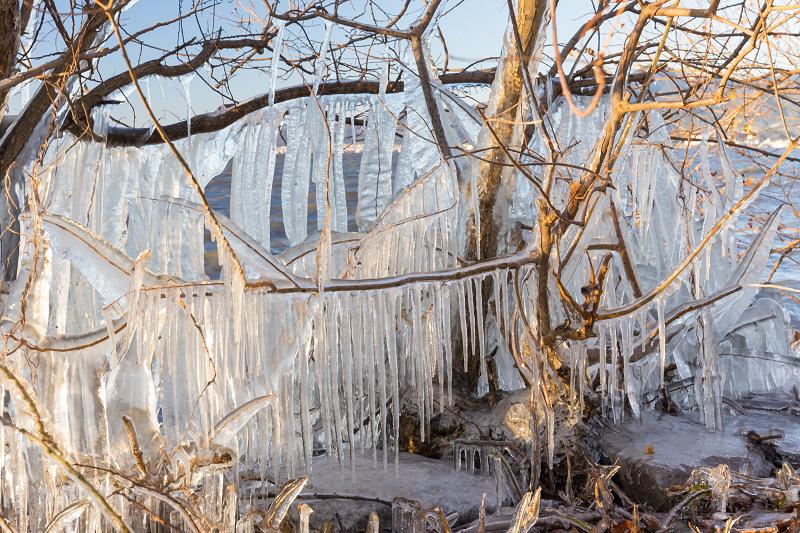 飛沫氷のある朝の情景(琵琶湖)_f0155048_18230328.jpg