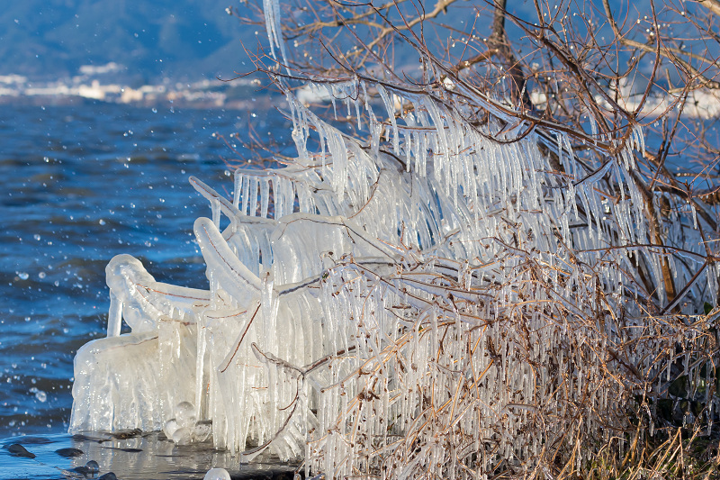 飛沫氷のある朝の情景(琵琶湖)_f0155048_18250109.jpg