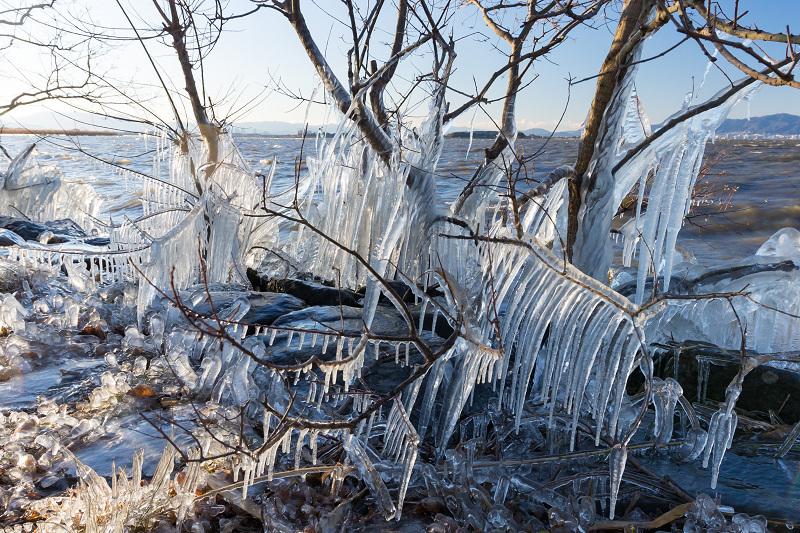 飛沫氷のある朝の情景(琵琶湖)_f0155048_18254396.jpg