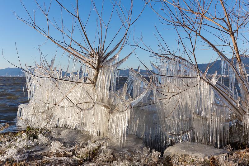 飛沫氷のある朝の情景(琵琶湖)_f0155048_18434116.jpg